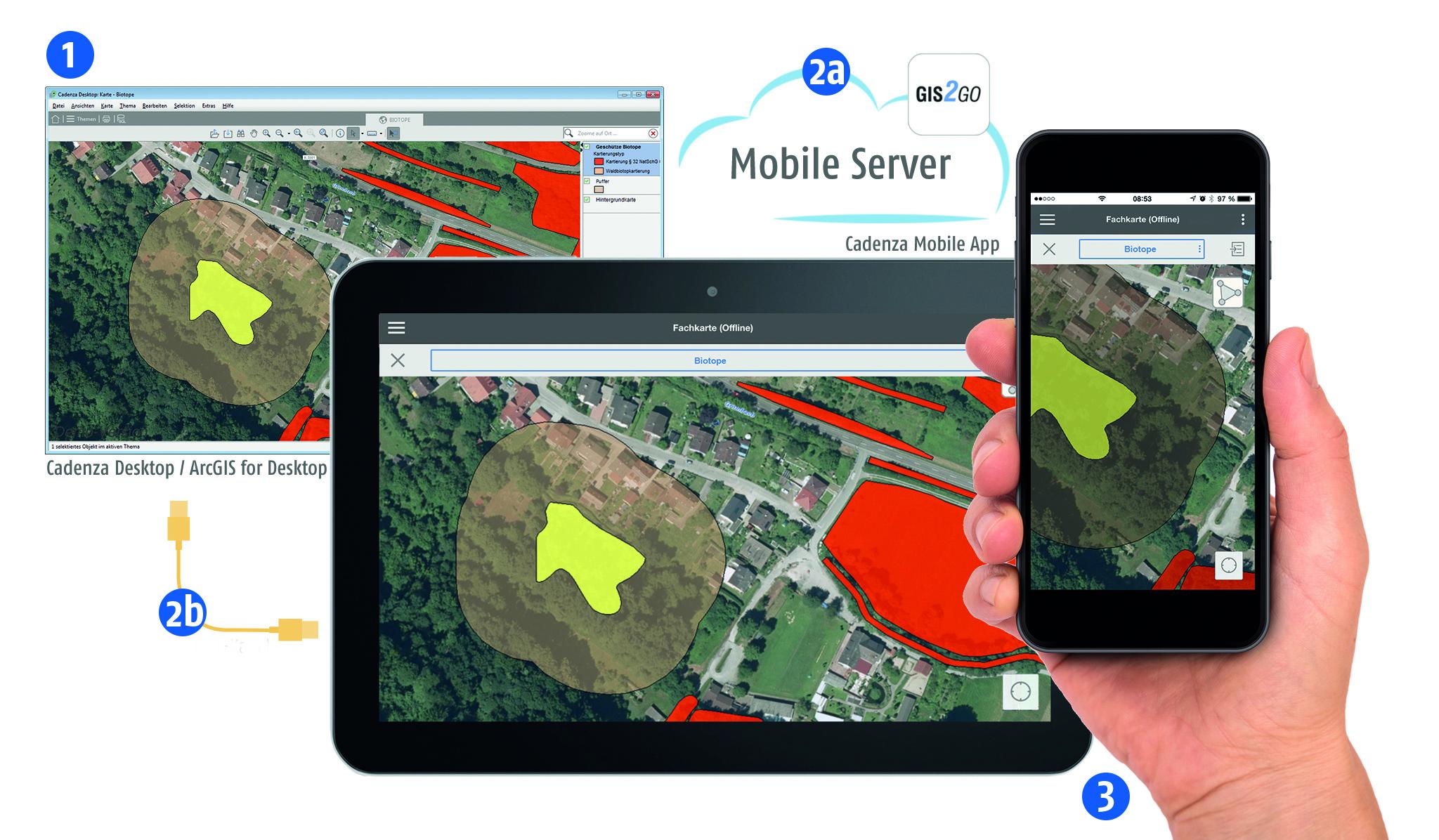Abb. 3: Exportprozess der Daten aus Cadenza Desktop auf das Mobilgerät